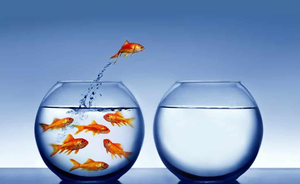 How do MBA Programs help entrepreneurs?